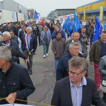 La pêche électrique définitivement interdite dans l'Union européenne